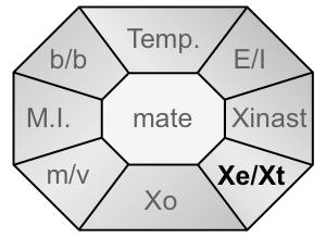 Xident-XeXt