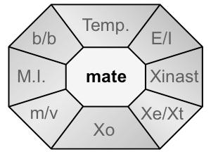 Xident-mate