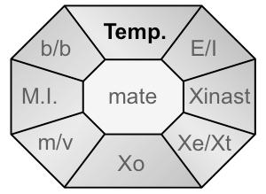 Xident-Temp