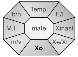 Xident-Xo