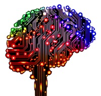 brein fantasie
